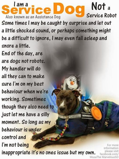 Image Result For Service Dog Quotes Large Dogs Pinterest