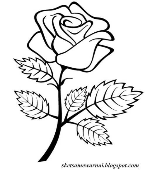 Gambar Vignet Bunga Mawar Gambar Ikan Di Awan Contoh Gambar Lukisan Bunga Sederhana Dan Simp Rose Coloring Pages Flower Coloring Pages Flower Sketch Images