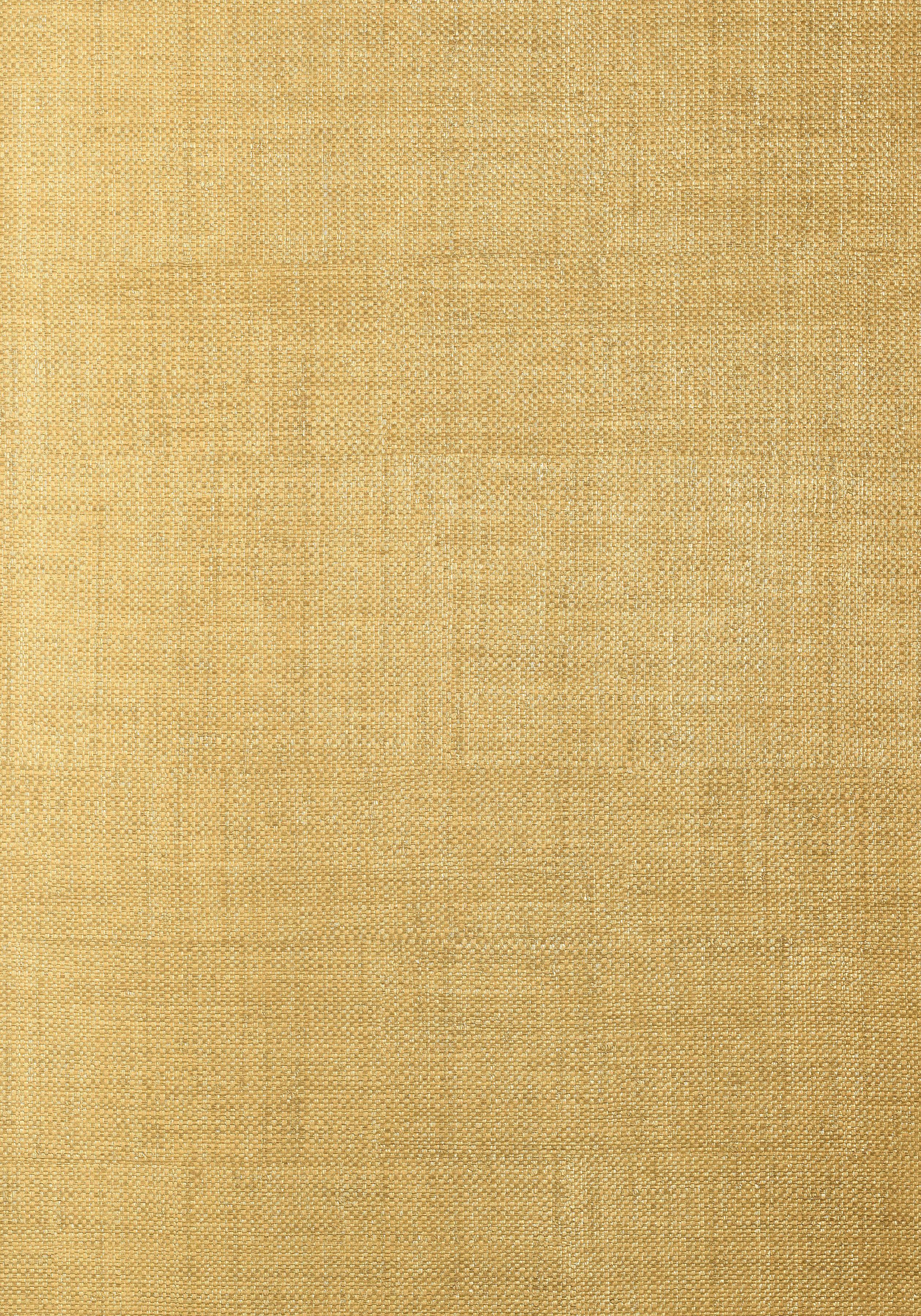 Bankun Raffia Metallic Gold T14133 Collection Texture