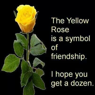 Yellow Rose Means Friendship Yellow Roses Friendship Symbols
