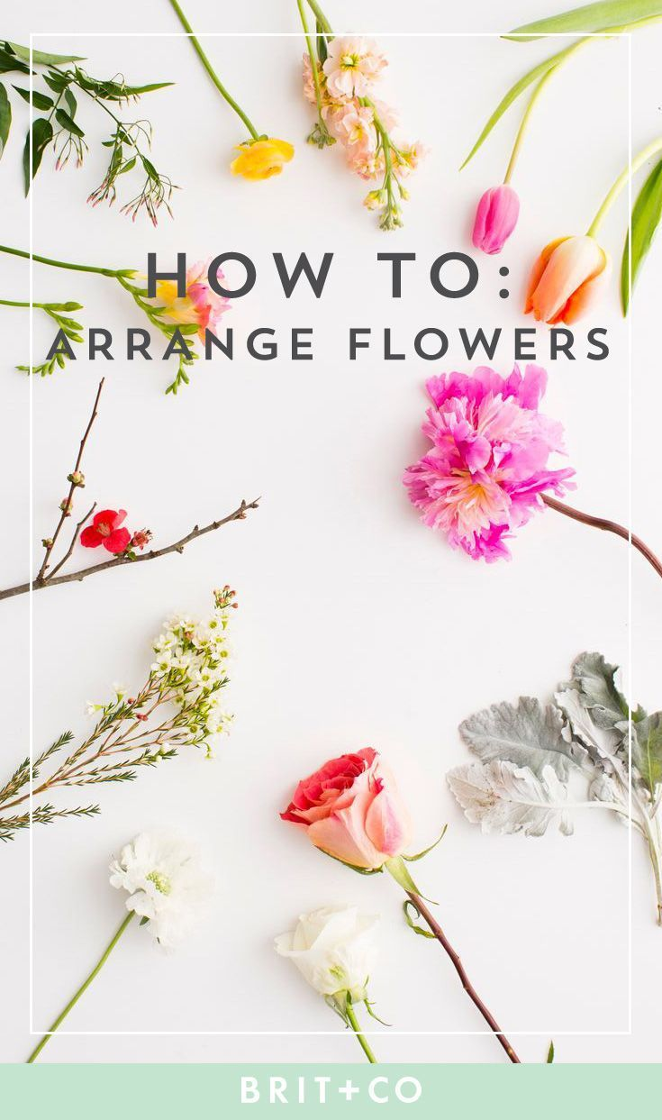 You Need to Know About Flower Arranging Read these tips to learn how to properly arrange various flowers, for Valentine's Day + beyond.Read these tips to learn how to properly arrange various flowers, for Valentine's Day + beyond.Everything You Need to Know About Flower Arranging Read these tips to learn how to properly arrange various flo...