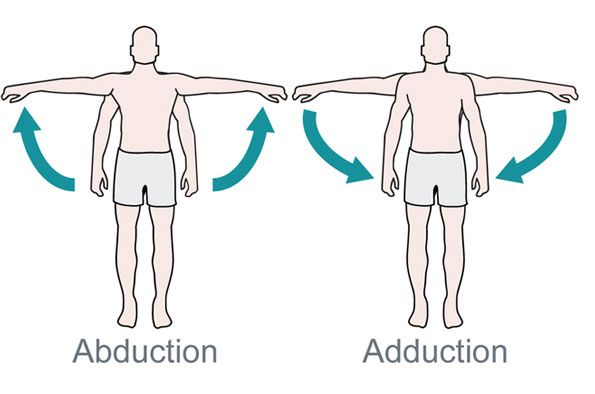 49++ What is abduction in anatomy ideas
