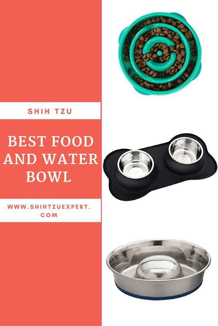 Best food and water bowl for shih tzu shihtzu shih tzu