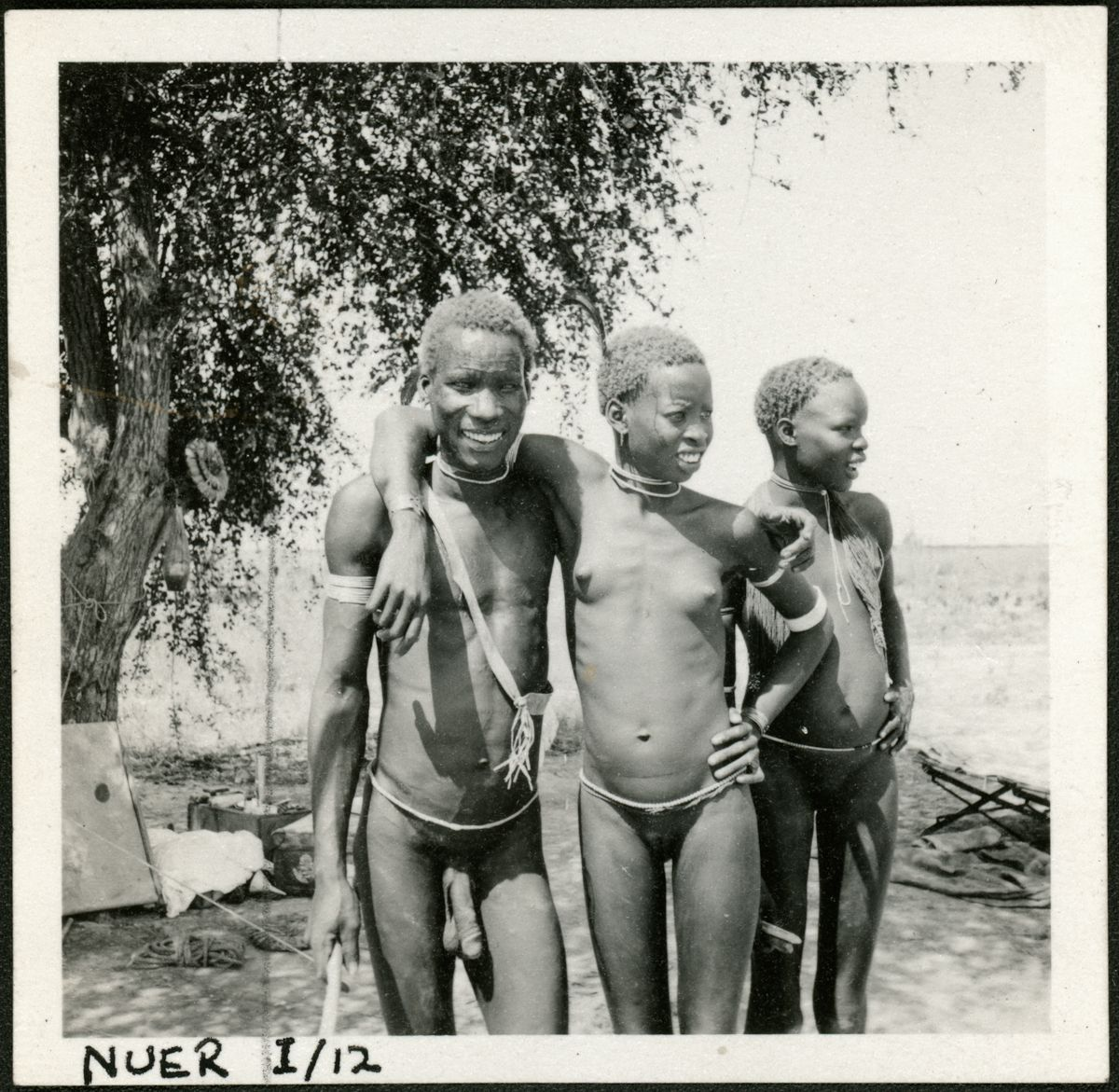 an analysis of the nuer by ee evans pritchard Evans-pritchard argued that the nuer adapt to their  there have been few attempts to replicate rappaport's analysis of  evans-pritchard ee 1940 the nuer:.