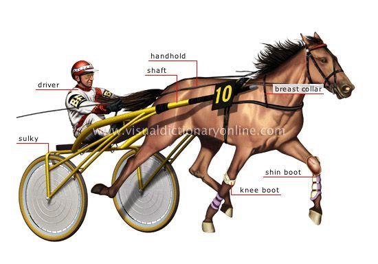 Horse betting online uk dictionary arbitraging bitcoins worth
