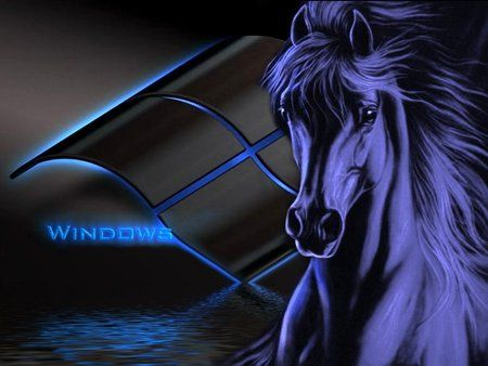 Black Horse Wallpaper 3D