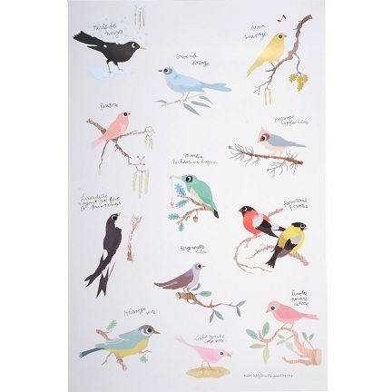 TINOU BIRDS POSTER -- 15.7 by 23.6 inches