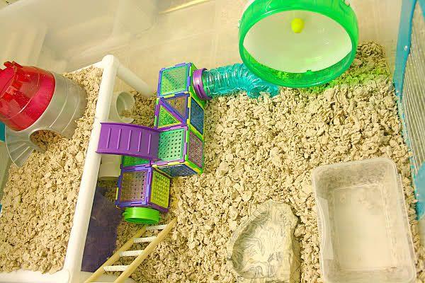 Homemade Hamster Cage Accessories Gaiola Hamster Hamster Gaiola