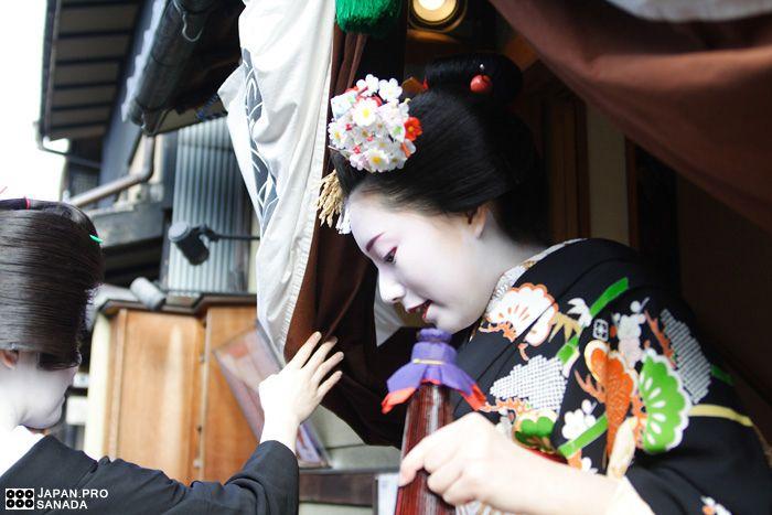 Maiko Mamechiho