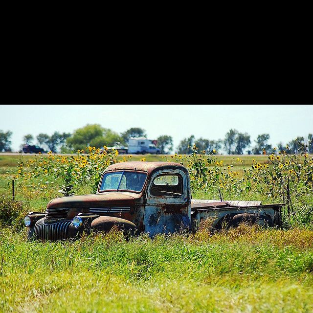 I Absolutely Love Old Dead Trucks In Fields With Images