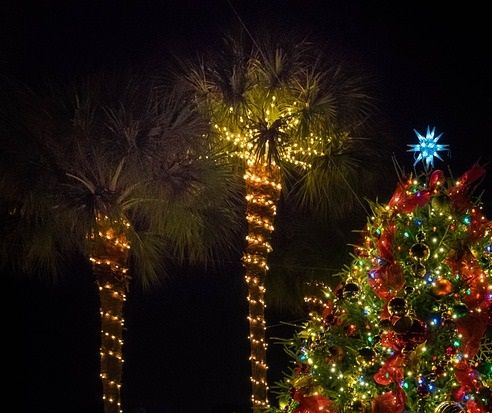 Save on St Augustine Night of Lights Trolley | Best christmas lights, Best christmas light ...