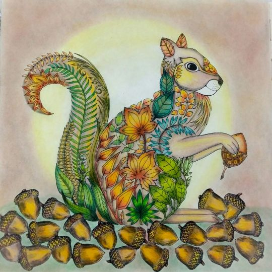94 Enchanted Forest Coloring Book Squirrel Free Images