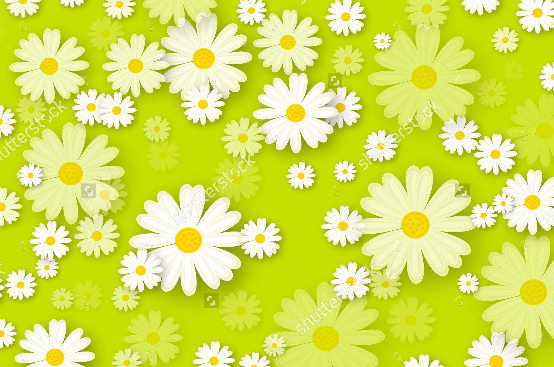 daisiesRwild by daisiesRwild Daisy background
