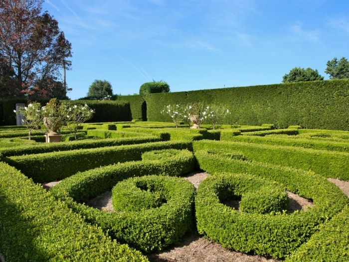Jardines modernos laberinto muy bien mantenido con formas for Arboles altos para jardin