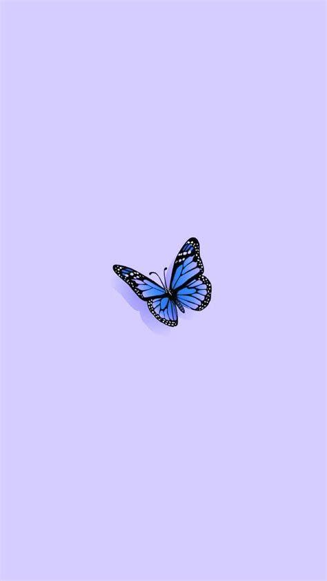 Single Butterfly Wallpaper   Butterfly Wallpaper Iphone