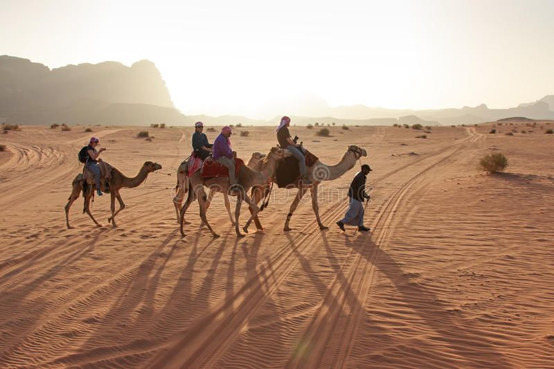 Tourists riding camels at sunset in the Wadi Rum desert, Jordan. Wadi Rum, Jorda , #ad, #sunset, #Wadi, #camels, #Tourists, #riding #ad #wadirum