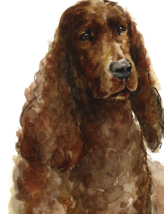 Irish Setter Watercolor Painting. Animal Wall Decor. Dog Portrait Home Art Print. Brown Irish Setter Dog Gift Idea.  Type of paper: Prints up to
