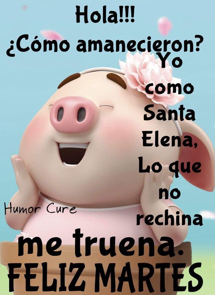 Pin By Celsa Zappala On Buenos Dias De La Semana Funny Good Morning Memes Funny Jokes Life Humor