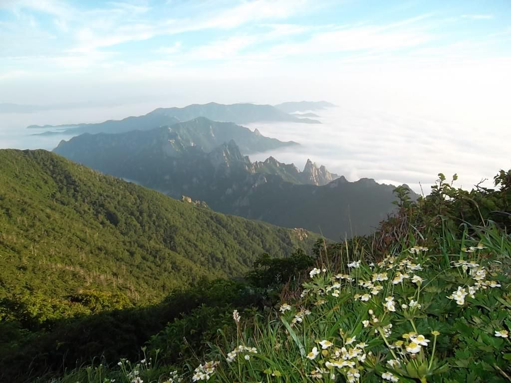 Seoraksan Is The Highest Mountain In The Taebaek Mountain Range In The Gangwon Province In Eastern South Korea With Images Seoraksan National Park National Parks Sokcho