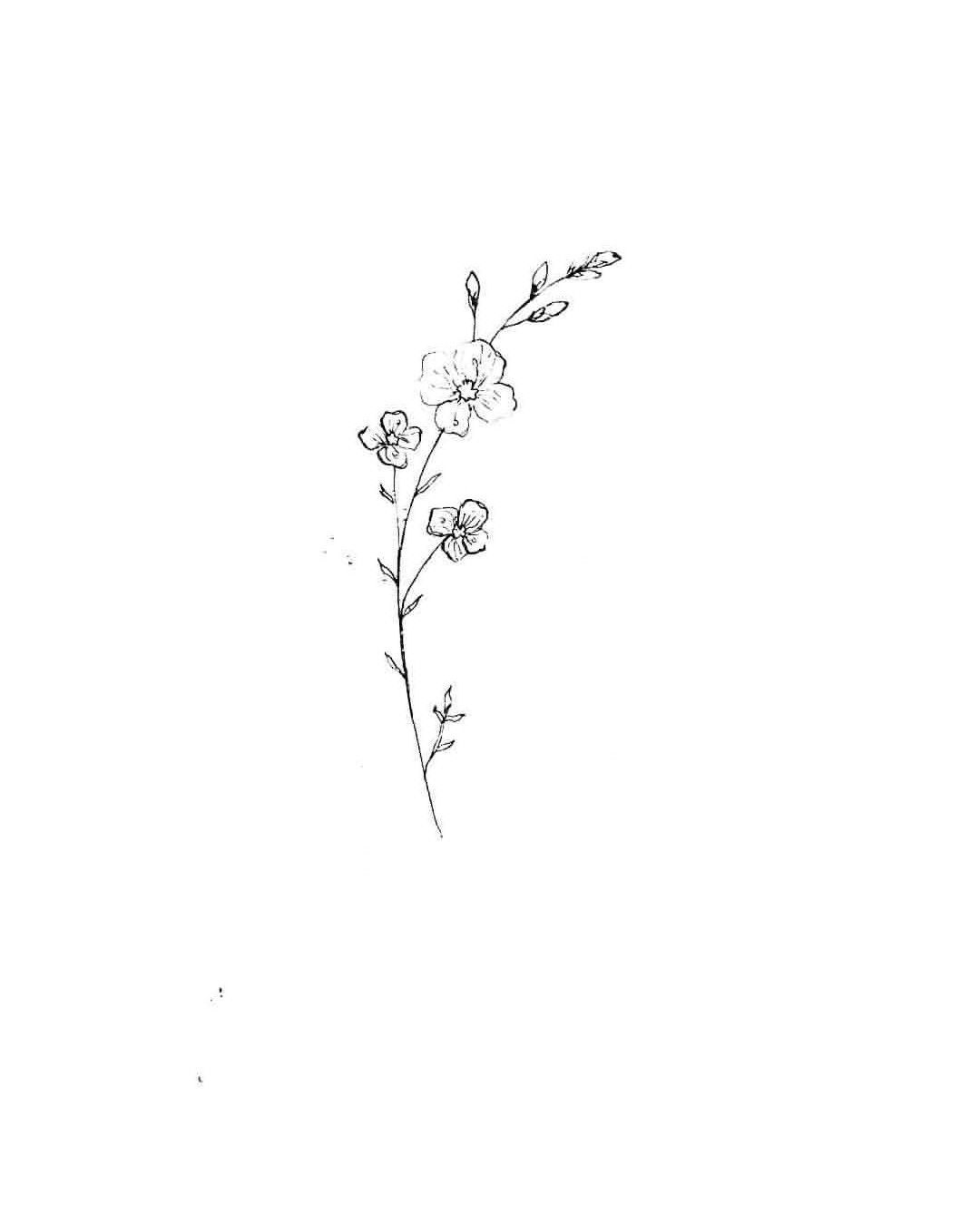 Wild Flower 4 Wildflowers Wildflower Tattoo Dainty Tattoos Tattoos