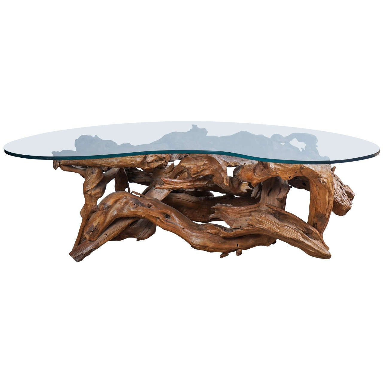 image result for tree root coffee table glass top | darwin | pinterest