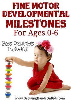 Fine motor developmental milestones for ages 0-6.