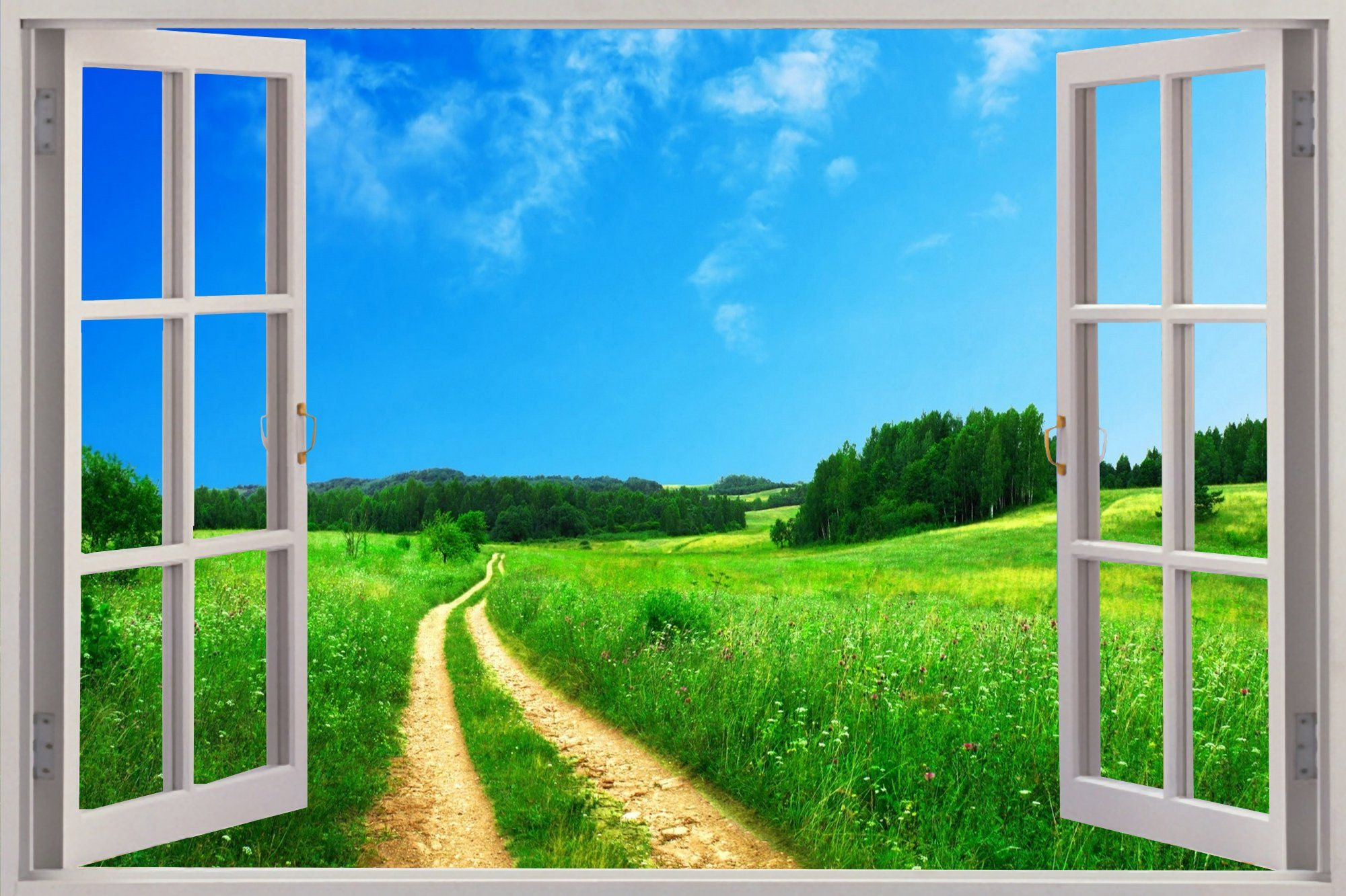 """window view"" Google Search View wallpaper, Windows"
