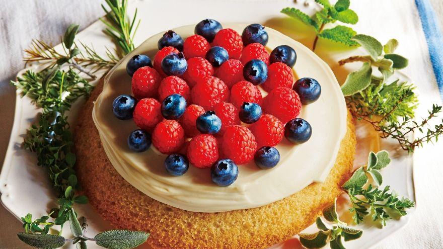 保存 スポンジ ケーキ