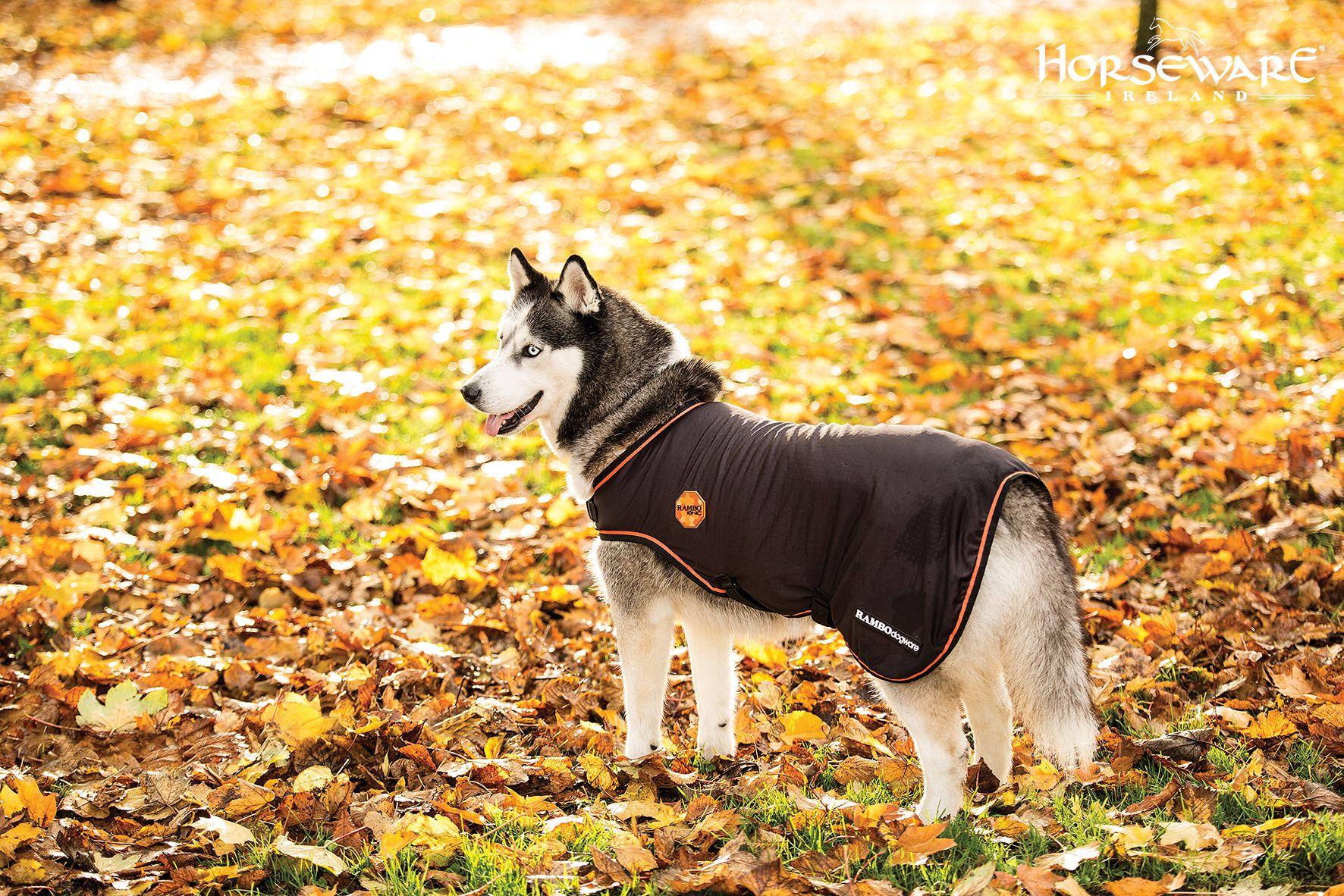 Horseware Rambo Ionic dog rug Dog blanket