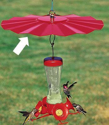 Duncraft Com Hummingbird Weather Baffle Humming Bird Feeders Hummingbird Bird Feeders