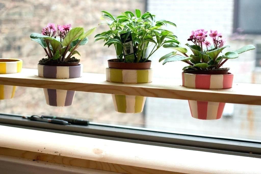 Indoor Window Sill Planter Window Sill Planter Window Boxes Window Sill Planter Box Indoor Window Le Indoor Window Planter Window Planter Boxes Window Planters