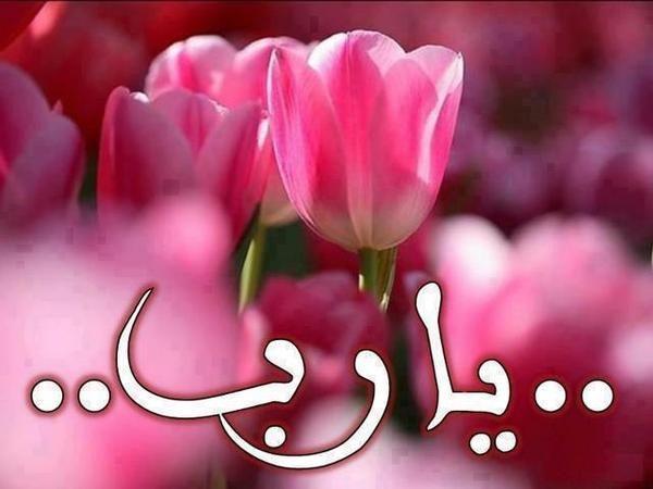 Pin By Don Omar On ونحن أقرب إليه من حبل الوريد Quran Arabic Girly Pictures Islamic Images