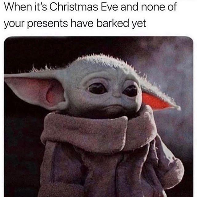 16 Knee Slappingly Funny Tweets From This Week Yoda Meme Kid Memes Star Wars Memes