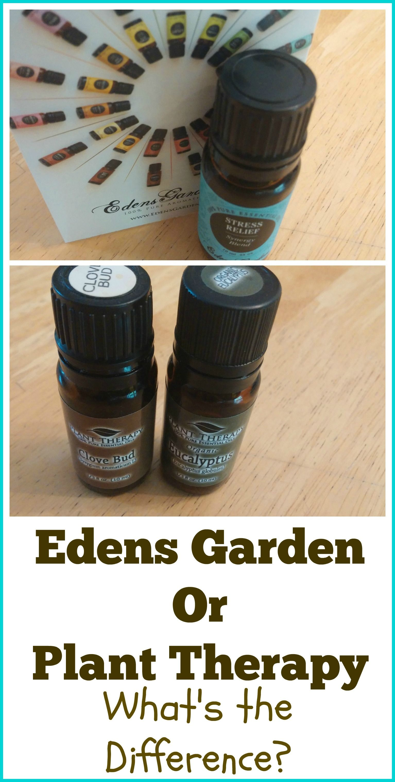 Edens Garden vs Plant Therapy Plant therapy, Edens