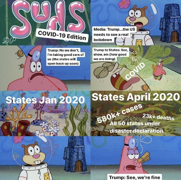 2020 In A Nutshell Happy Memes Funny Cartoon Memes Funny School Memes