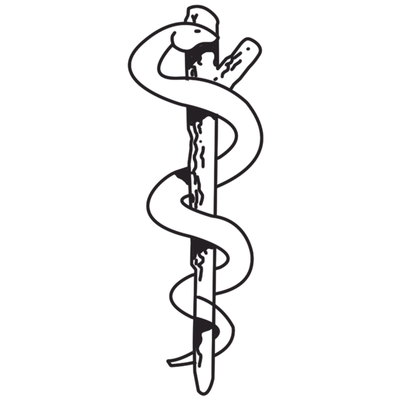 Medical Symbol Snake Meaning Why Are There A Snake And Wings On The