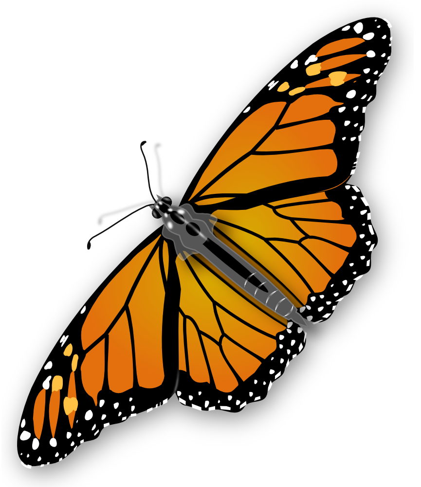 Monarch Butterfly Image Free Butterfly Clip Art Monarch Butterfly Clip Art