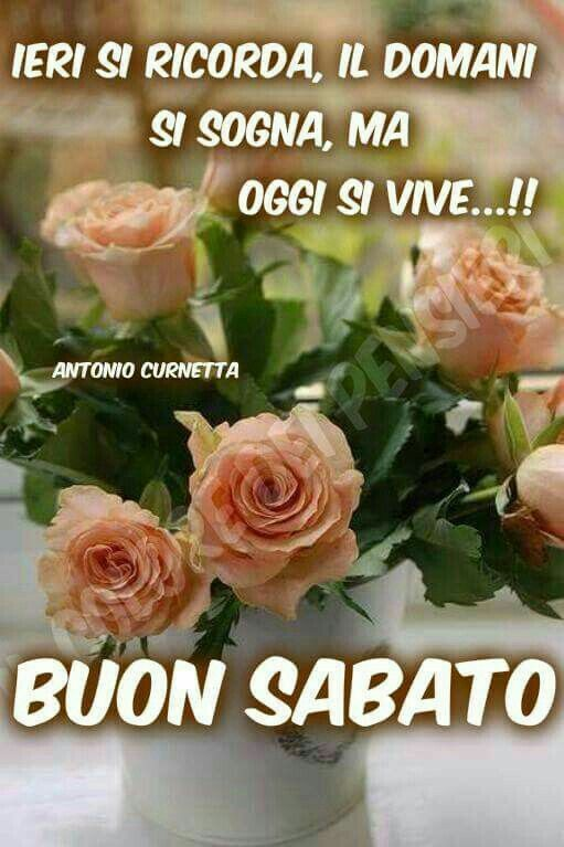 Buon sabato buon sabato good morning night e messages for Immagini divertenti buon sabato