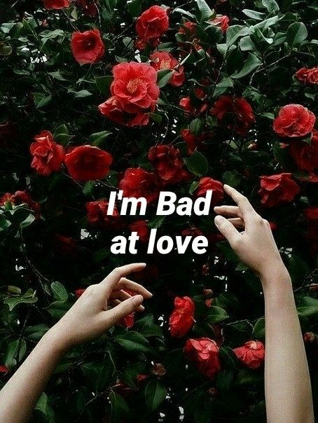 Bad At Love Halsey Music Quote Quotes Im Bad At Love