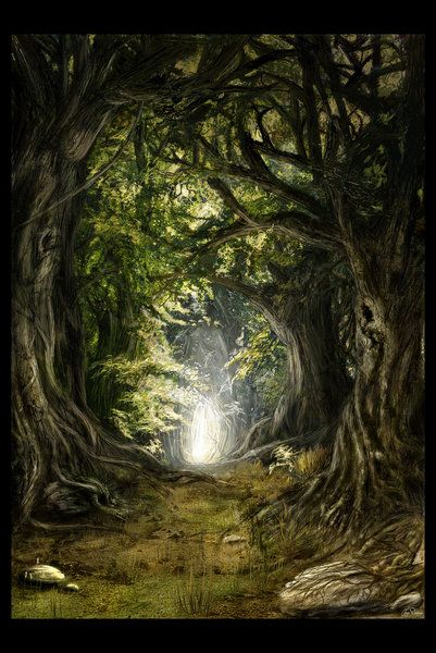 Deep in the Woods by Gate-To-Nowhere (print image)