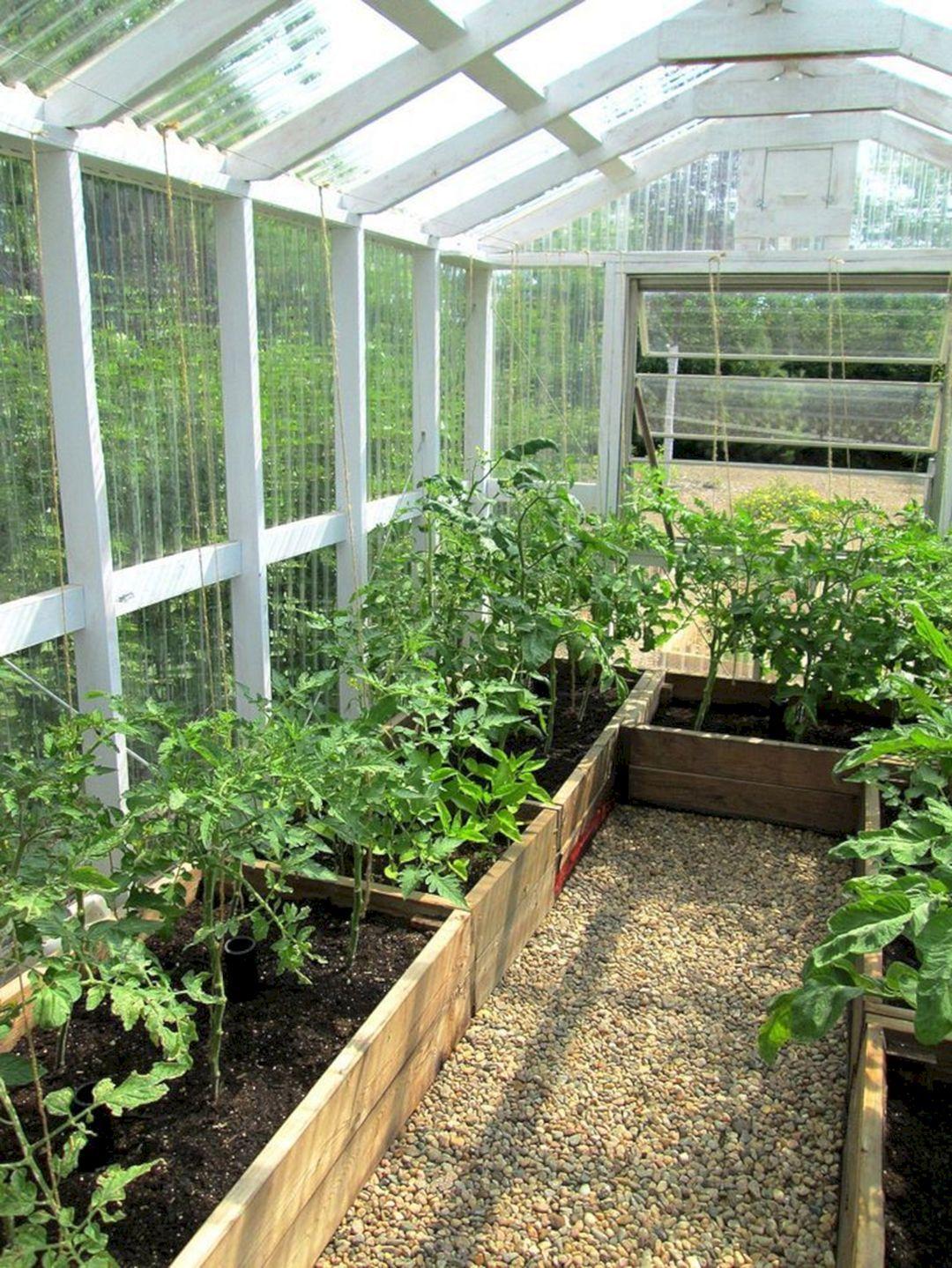 30 Beautiful Backyard Garden Design With Small Greenhouse Ideas Freshouz Com Diy Greenhouse Plans Backyard Greenhouse Build A Greenhouse