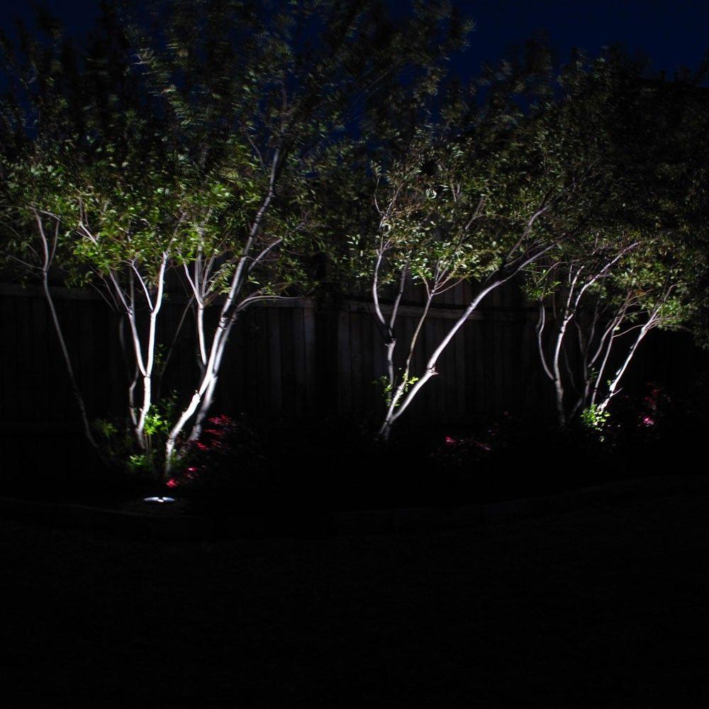 Solar Spot Lights for Your Garden Powerbee ® Custodian