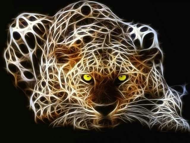 Resultado de imagem para leopárdo fractal image