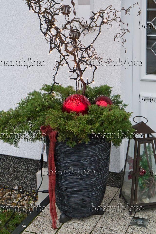 527029 - Hauseingang mit Weihnachtsdekoration #weihnachtendekorationdraussengarten