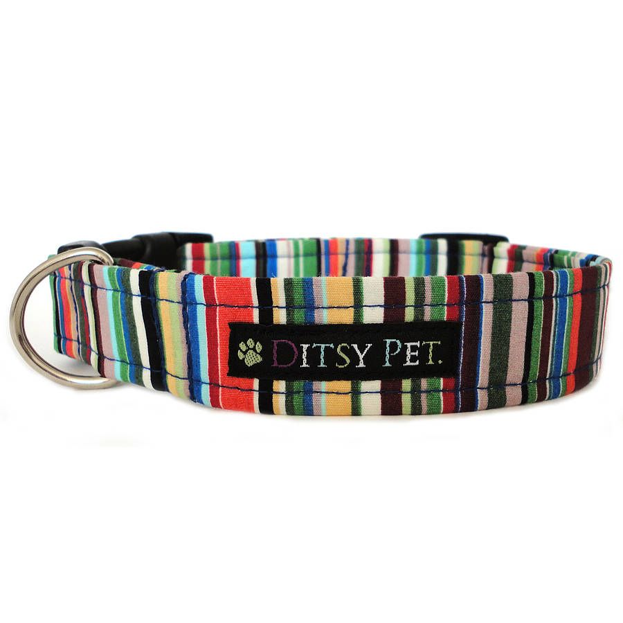 Home collars blueberry pet dog collar nautical flags inspired - Joseph Striped Dog Collar By Ditsy Pet Notonthehighstreet Com