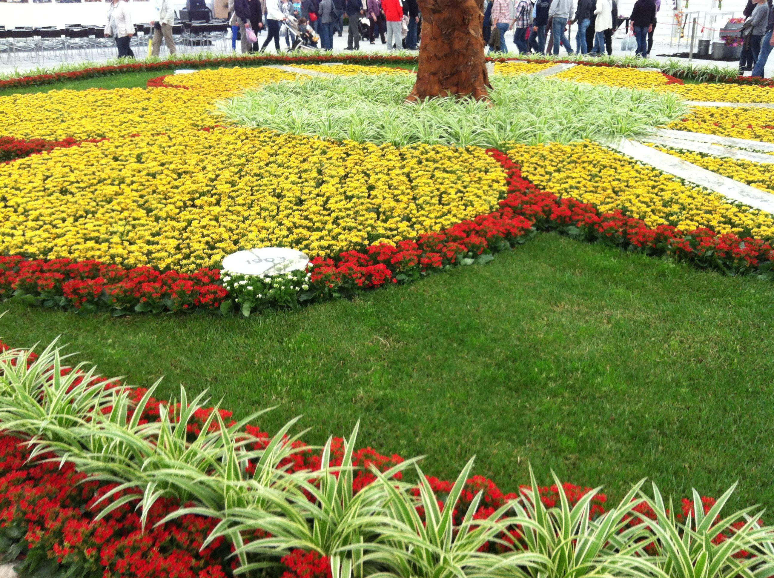 Floraart Zagreb 2013 #11   Zagreb, Flowers