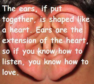 Đôi tai, nếu kết hợp vào với nhau sẽ có hình giống như một Trái Tim. Đôi Tai là sự Mở Rộng của Trái Tim, do đó nếu bạn biết Lắng Nghe như thế nào, bạn cũng sẽ biết Yêu như thế nào! :)