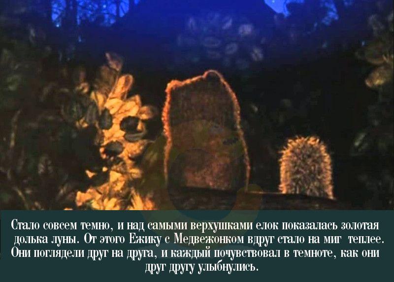 уже ежик и медвежонок считали звезды картинки нашей