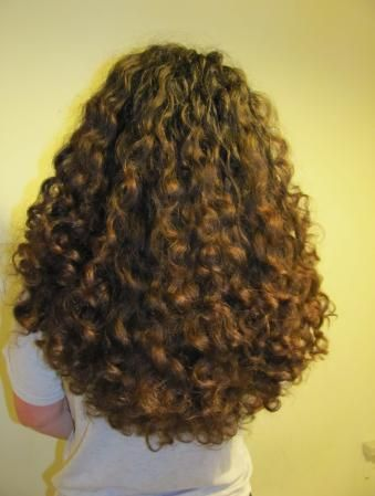 long curly hair from the back lush natural hair