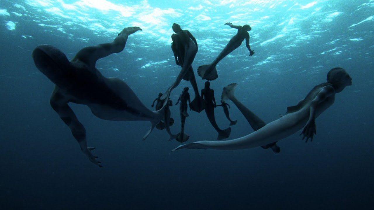 Sirenas reales captadas por cámaras ¿Lo crees?